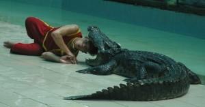 Krokodil_2